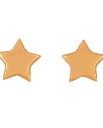 orecchini lobo stelle argento placcato oro satinato Aquaforte